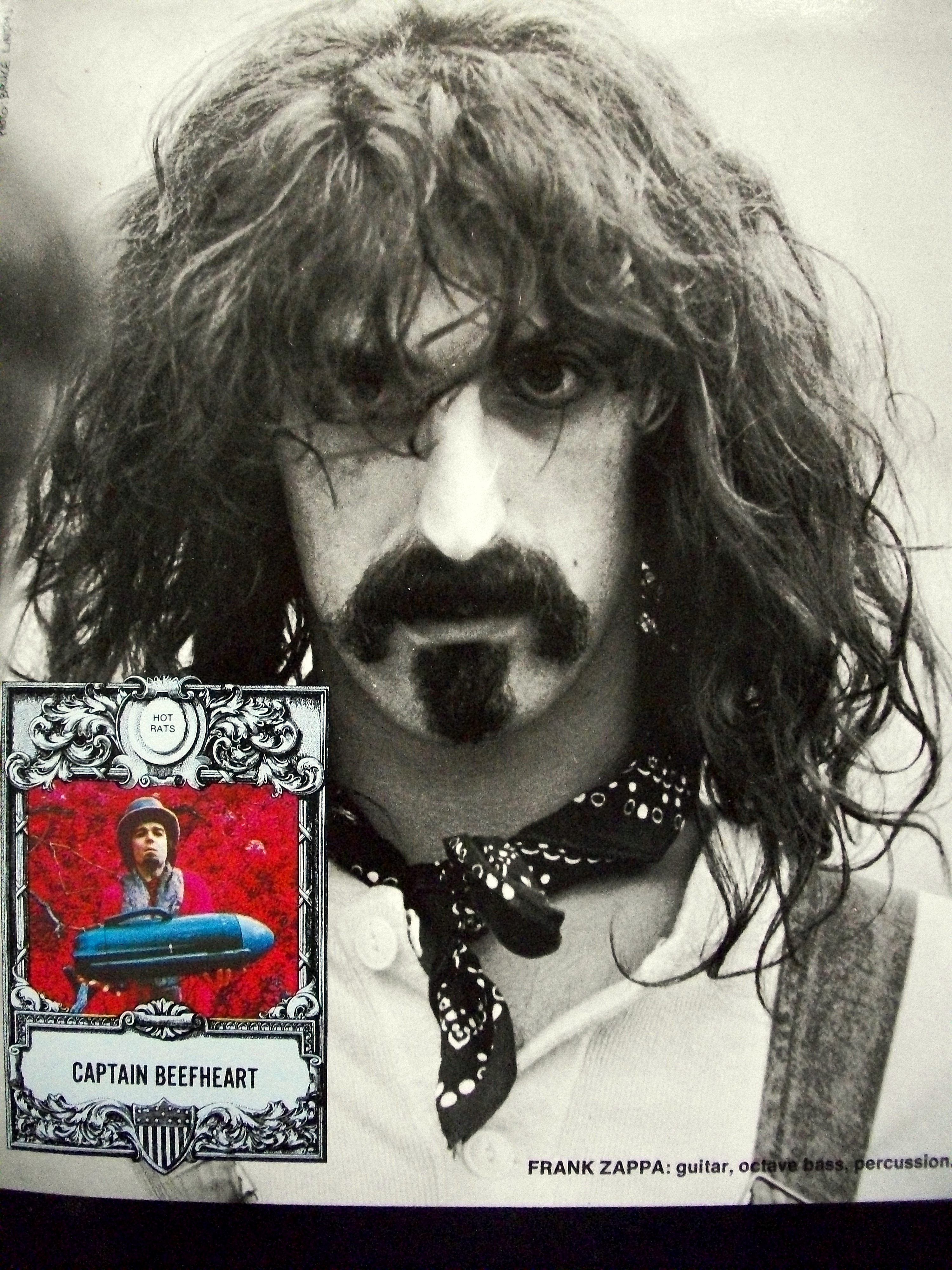 a biography of frank zappa the guitarist