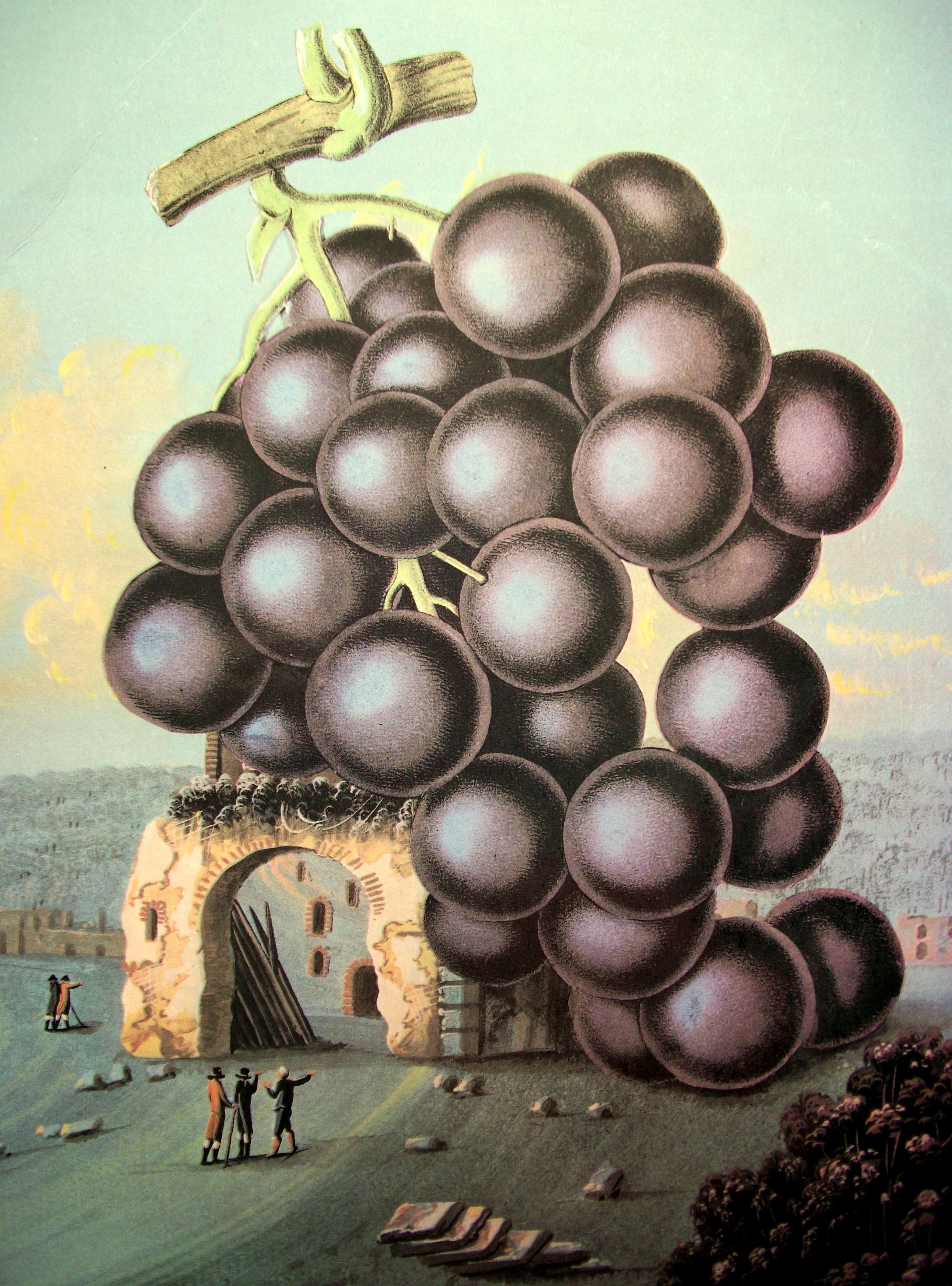 Moby Grape Sinister Salad Musikal S Weblog