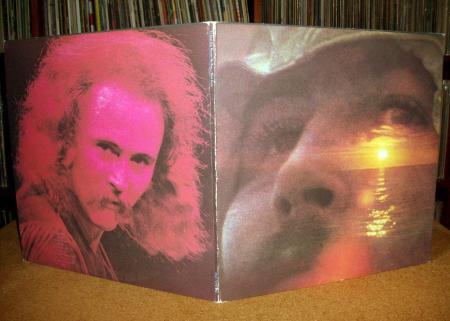 Sinister Vinyl Collection David Crosby If I Could Only